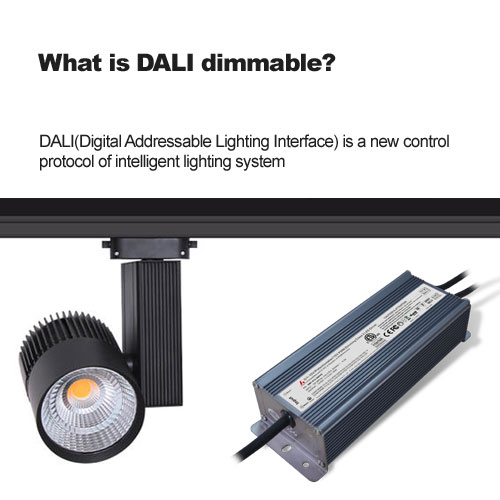 What is DALI dimmable?